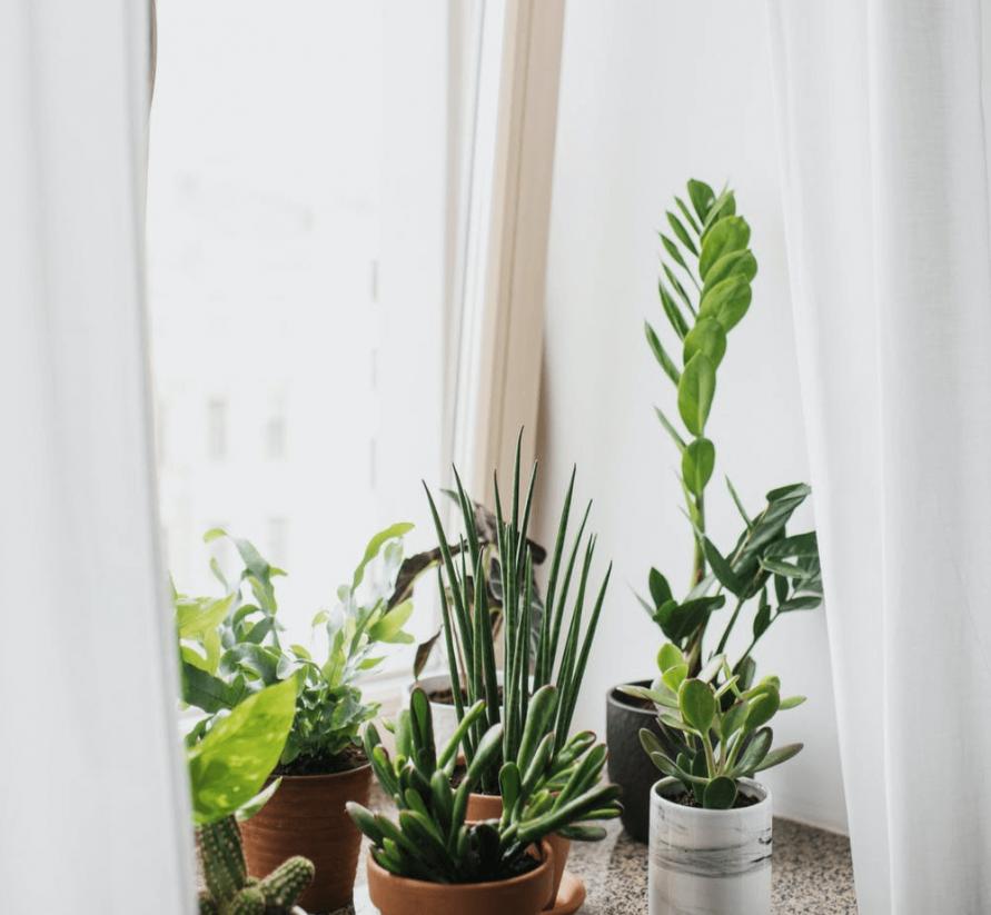 Mantener fresca una habitación