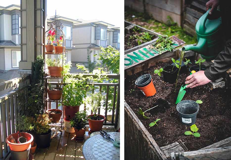 No dudes en plantar y hacer florecer tu balcón o terraza para darle más color y vida.